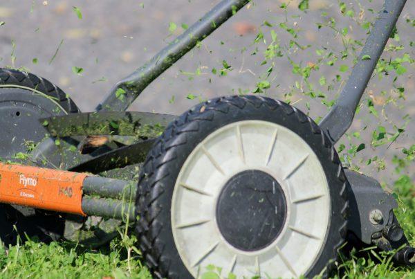 grasmaaien met grasmaaier